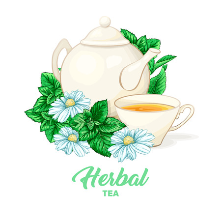 Porcelain or Ceramic Teapot Service. Mint Tea Leaves and Chamomile Flowers. Green Tea Cup. Isolated and Detailed Herbal Therapy Vector Illustration. Banner Design, Restaurant Menu, English Breakfast. Stock Vector - 127664239