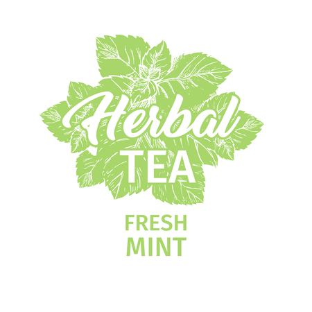 Herbal Tea with Fresh Mint Logo Template. Isolated Hand Drawn Green Silhouette Label with Peppermint. Spearmint Botany Plant and Hand-Lettering Calligraphy Inscription. Botanical Design, Medical theme. Logo