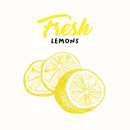 Fresh lemon vector illustration. Sketch fruit clipart. Handwritten lettering, calligraphy. Isolated yellow citrus color design element.