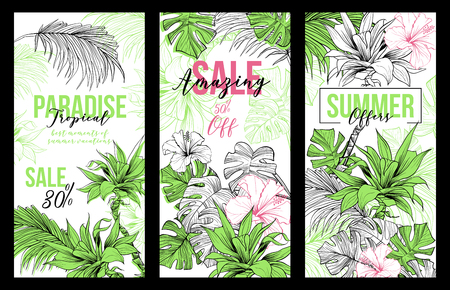 Set of sketched coconut or queen palm trees with leaves. Paradise Sale or Offers vertical vector banners, desert coco flora, hibiscus flower. Foliage of subtropical fern. Green palmae and arecaceae.