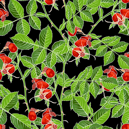 Dogrose Seamless Pattern, Luxury Wild Briar Rose. Rosehip Romance Fabric Textile Design with Black Background for Wrapping Paper, Canker Rose Gift Bag and Bramble Packaging