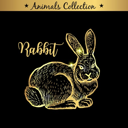 Golden and royal Hand Drawn Emblem of farm Rabbit animal. Butchery shop branding, meat products. Butcher market. Gold Outline Sketch and lettering. Contour drawing concept