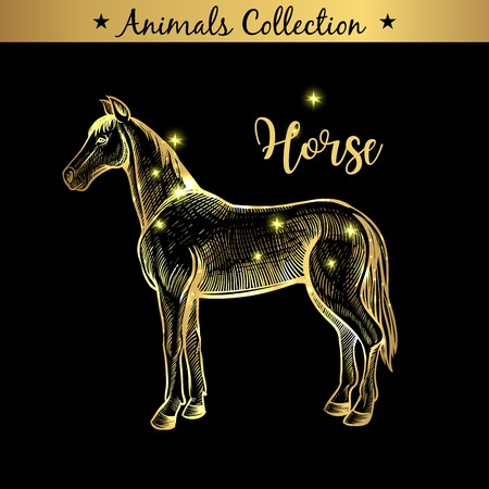 Golden and royal Hand Drawn Emblem of farm Horse animal. Butchery shop branding, meat products. Butcher market. Gold Outline Sketch and lettering. Contour drawing concept