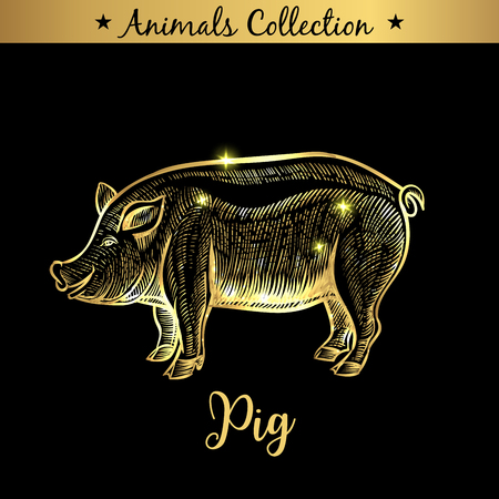 Golden and royal Hand Drawn Emblem of farm Pork animal. Butchery shop branding, meat products. Butcher market. Gold Outline Sketch and lettering. Contour drawing concept Stock Illustratie