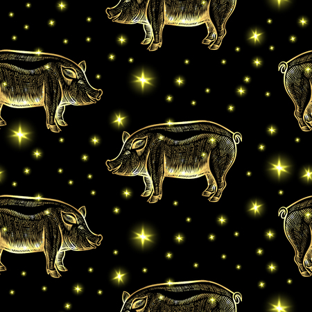 Glowing Night Pigs with Stars on the Black Background. Vector Seamless Pattern Illustration of the Symbol 2018 New Year by Chinese Calendar  イラスト・ベクター素材