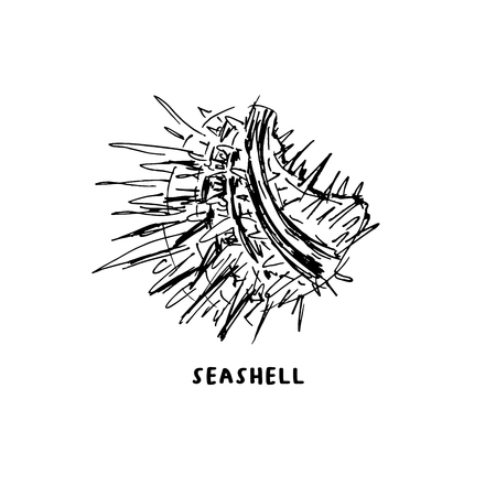 Angular murex seashell hand drawn vector logo with lettering. Seashore conch, mollusk monochrome sketch. Freehand outline clam shell engraving. Conchology isolated design element. Realistic ink pen drawing
