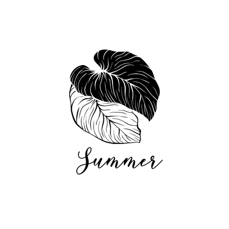 Summer leaves hand drawn vector logo layout. Monstera, silver cloud plants sketch drawing. Rainforest exotic foliage illustration. Tropical resort logotype with calligraphy design concept