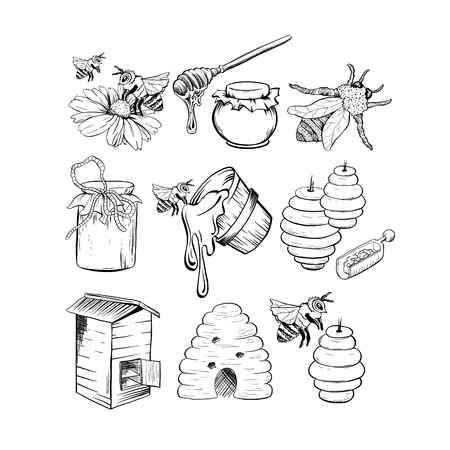 Honey Sketches Set, Bee Hive, Honey Jar, Barrel, Pot, Spoon and Flower Hand Drawn Organic Products for design. Black Outline Engraving Elements. Vintage Isolated Vector Illustration