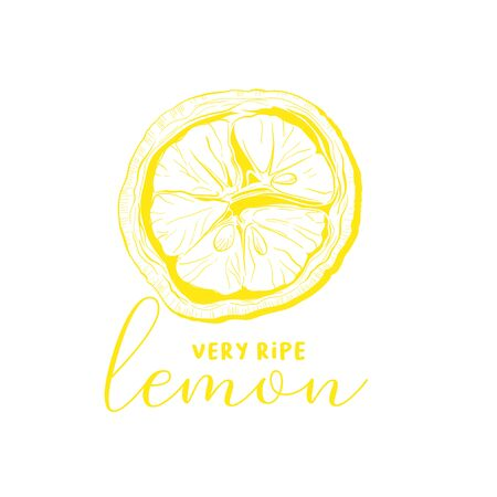 Lemon hand drawn illustration. Ink pen outline sketch of fruit. Yellow clipart with calligraphy inscription. Realistic citrus plant freehand drawing. Isolated monochrome design element