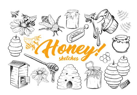 Honey Sketches Set, Bee Hive, Honey Jar, Barrel, Pot, Spoon and Flower Hand Drawn Organic Products. Black Outline Engraving Elements. Vintage Isolated Vector Illustration