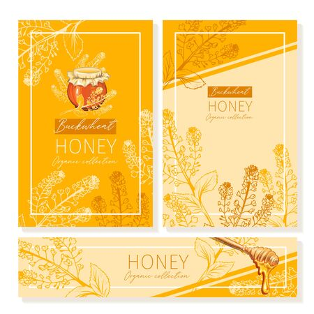 Buckwheat Honey Print Template. Yellow and Orange Banners for Thanksgiving Holiday or Packaging Brand Identity. Vector Illustration Çizim