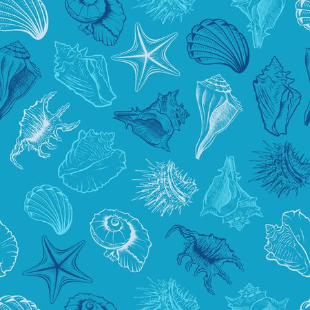 Seashells, scallops vector seamless pattern. Marine life animals colorful drawings on blue background. Sea urchin freehand engraving. Underwater creatures outline. Wallpaper, textile design