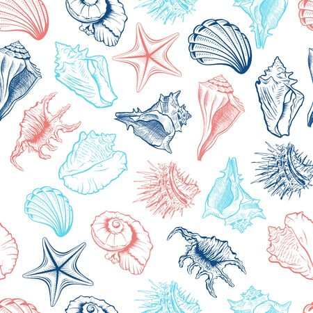 Seashells and starfish vector seamless pattern. Marine life creatures colorful drawings. Sea urchin freehand outline. Underwater animals engraving. Wallpaper, wrapping paper, textile design
