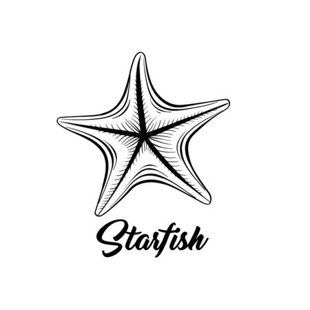 Starfish black and white vector illustration. Sealife saltwater creature freehand drawing. Marine fauna, oceanic invertebrate animal hand drawn engraving with calligraphy. Postcard design element Çizim