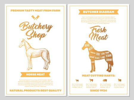 Butchery Shop Poster with Horse Meat Cutting Charts in Golden Colors on White Blackground. Vector Vertical Print Templates. Sketch Hand-drawn Farm Animal Illustration. Butchers Guide Diagram Design