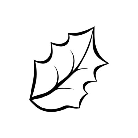 Mistletoe leaf hand drawn vector illustration. Ilex aquifolium close up colouring picture. December holiday, christmas celebration outline symbol. Winter forest flora freehand ink pen drawing 일러스트