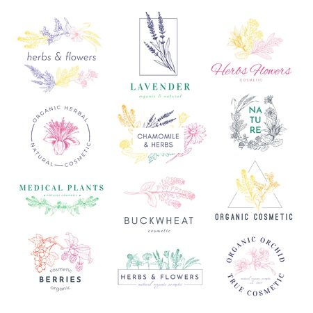Cosmetic products logo hand drawn vector set. Medical plants, lavender, buckwheat illustrations with typography pack. Natural eco with herbs label, sticker, badge design collection