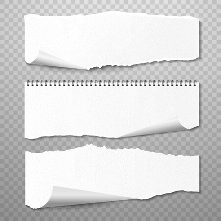 Horizontal Torned Papers Vector Set. Realistic 3d render Blank Pieces of Paper with Ragged Edges, White Pages with Copy Space Isolated on Transparent Background and Realistic Shadow Ilustração