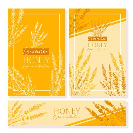 Honey vintage banners design. Engraved Lavender honey flower with glass honey jar and drop.