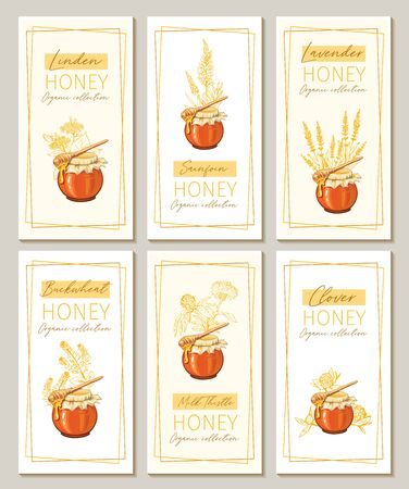 Honey flowers vintage vertical flyers design. Engraved Clover, Milk Thistle and Sainfoin plants with glass honey jar and drop.
