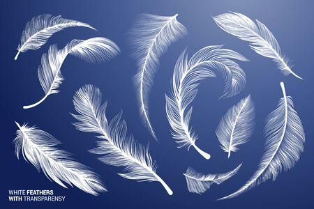 Plumes d'oiseaux réalistes blanches. Vector Flying Feathers sertie de transparence. Collection de cliparts. Plume pelucheux tombant duvet détaillé. Duvet d'oie ou de cygne. Différents éléments isolés légers. Vecteurs