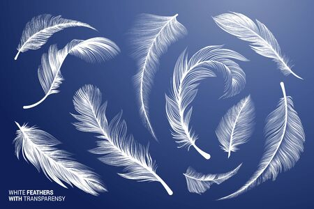 White Realistic Bird Feathers. Vector Flying Feathers Set with Transparency. Clipart Collection. Plume fluffy falling detailed fuzz. Goose or Swan fuzz. Different lightweight isolated elements. Stok Fotoğraf - 137648886