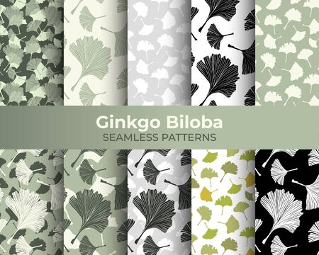 Ginkgo Biloba Seamless Pattern Collection. Vector Botanical Plant for Fabric Textile Design and Interior Wallpapers. Pale Sage on Ivory Background