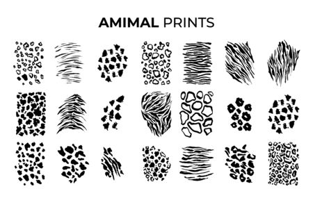 Black and White Tiger prints patterns, safari animals skin of big cats. Leopard, jaguar and zebra, vector texture decoration elements. Safari animals print patterns, panther cheetah and giraffe