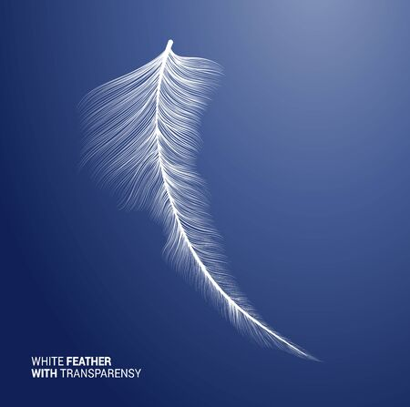 White fluffy feather, vector isolated realistic quill on blue background. Goose or swan bird feather symbol with detailed plumage texture, decoration element, softness symbol, concept design