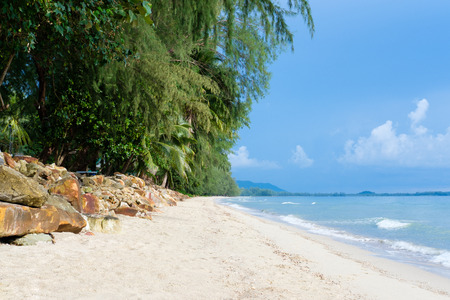 idyllic: idyllic beach scene with sea and trees