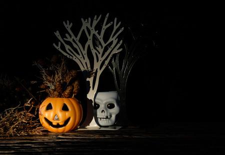 cranium: Dark halloween white cranium  and orange Pumpkin with dried flower. Low key tone