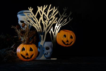 cranium: Dark halloween white cranium  and orange Pumpkin with dried flower and hide under bushes. Low key tone
