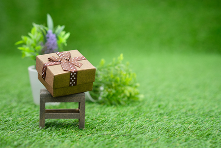 Gift box on brown wooden chair in green garden, with copy space to write. Stock Photo