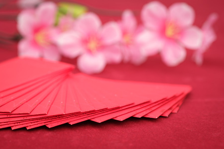 Chinese new year decoration,red fabric packet or ang pow, Space to write, AF point selection. Reklamní fotografie - 68911092
