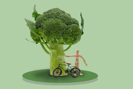 artists dummy: Illustration of wooden dummy stand under brocolis tree and bicycle on isolated blue background, Idea concept picture for healthy.