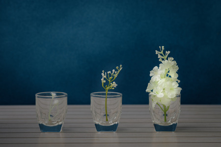 antique vase: Still life with flower in the glass vase on rustic blue background, Choose a focal point.