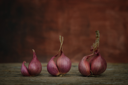culinary arts: Still life with onion on rustic wooden table, Choose a focal point. Stock Photo