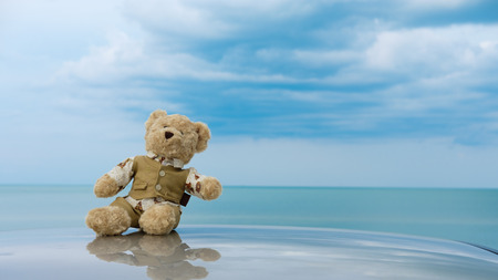 Teddy bear sit alone at the seashore.