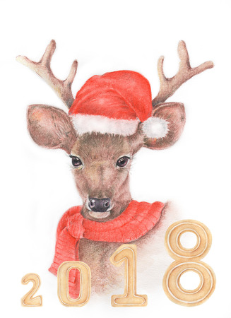 Watercolor and color pencil  illustration of deer by hand with decoration, Christmas, Happy New Year 2018 concept.