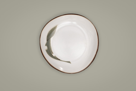 Top view-Empty white ceramic round dish plate isolated on green background. Reklamní fotografie