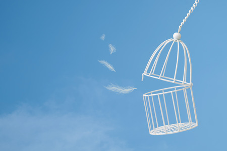 White feathers floating outside bird cage on  blue sky with cloud background, idea concept of freedom.