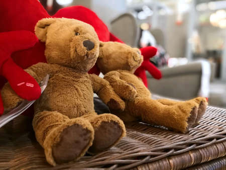 Two teddy bears sit on a box Stock Photo
