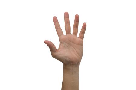 Eine Hand angehoben hoch oben isoliert auf weißem Hintergrund.