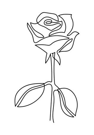Continuous one line drawing. Black and white illustration. one line of rose flower- art style isolated on white background.