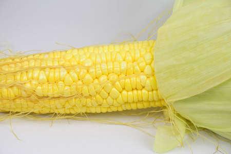 larger: Corn Stock Photo