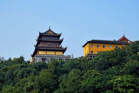 riverside tree: Temple at Binjiang, Hangzhou