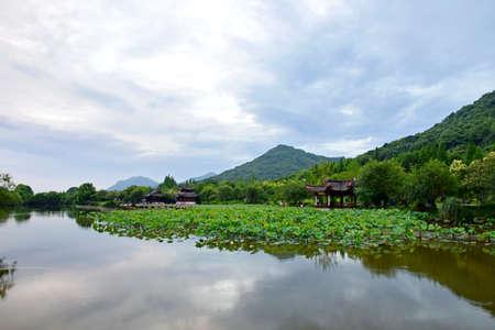 riverside tree: Scenery at the Xianghu lake of Binjiang at Hangzhou