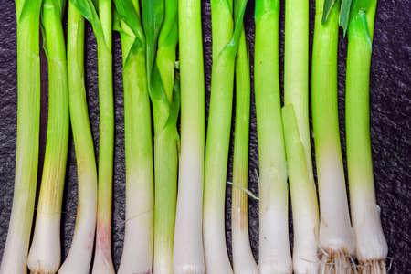 cebollitas: Cebollas de verdeo