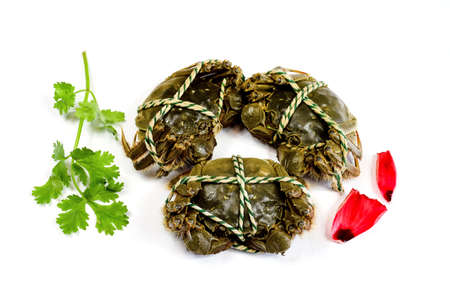 crabs: Lake crabs crabs