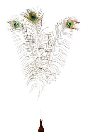 plumas de pavo real: Plumas del pavo real Primer Foto de archivo